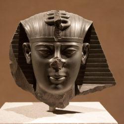 20110303-Berlin-Neues-Museum-Arch.-August-Stueler-David-Chipperfield-©-Gerald-Langer-12-IMG_9420